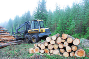 agriculture_forestry-small-300x200.jpg